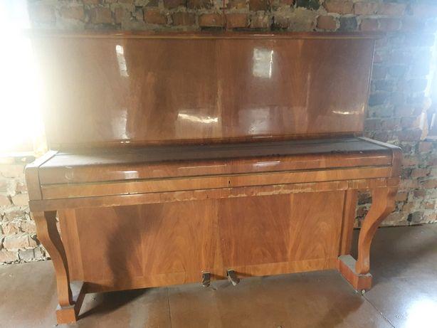Pianino Legnica - stare