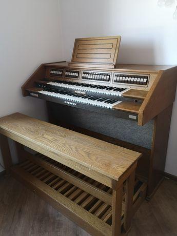 Organy Mansonic W 30