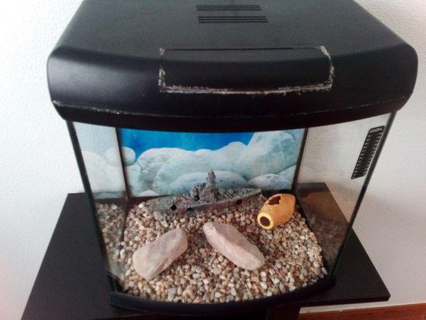 Vendo aquário, acessórios e móvel