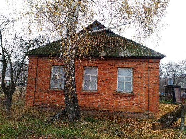 Будинок в селі Вовківці дом