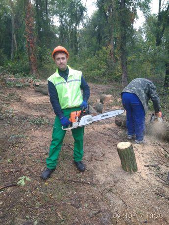 Спил деревьев любой сложности, пококос травы. Работаем с НДС.