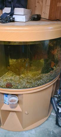 Aquario de canto em bom estado, com movel 1,50x1 m
