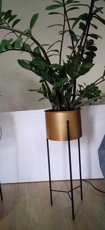 Złota doniczka na stojaku