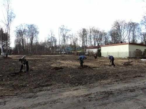 Rozbiórka altan ROD-Czyszczenie działek-Wycinka drzew-Koszenie traw