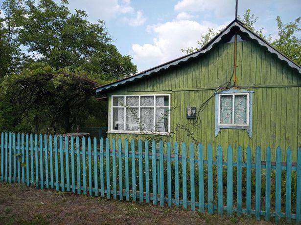 Сдам дачу недалеко от Харькова на берегу Рогозянского водохранилища.