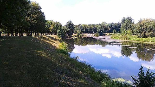 Земельна ділянка на річці Рось у Богуславському районі