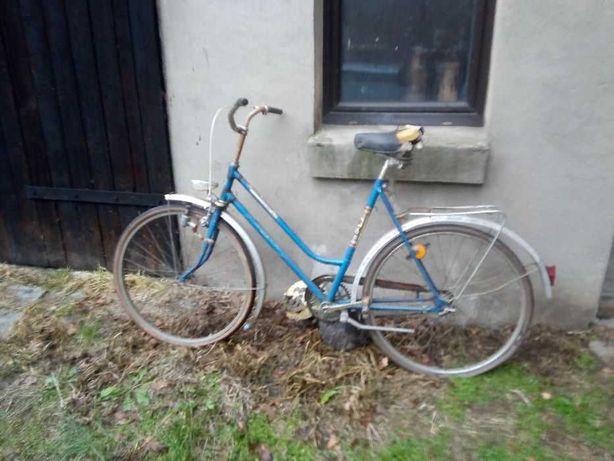 Stary rower damka