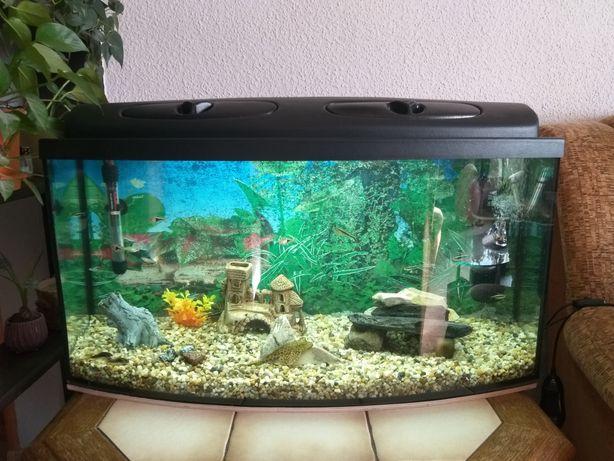 Kompletne akwarium 120l