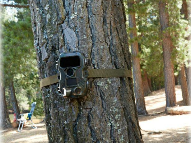 Kamera przyrodnicza