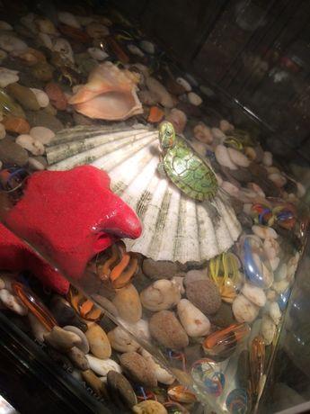 Для черепах, агам лампа, лампочка ультрафиолет с обогревом. Доставка
