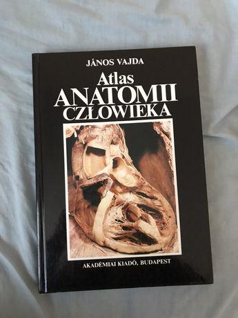 Atlas anatomii człowieka tom 2 Vajda