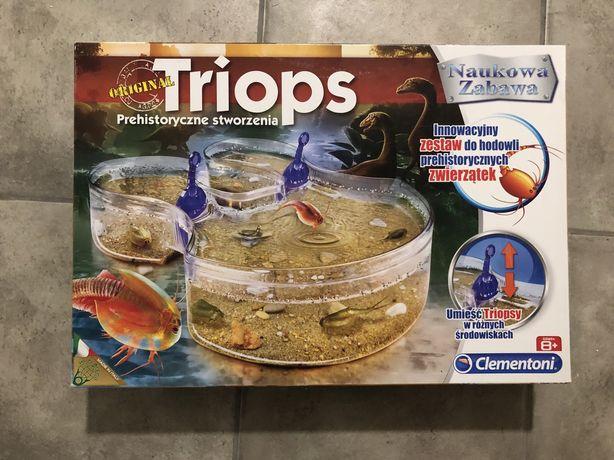 Triops-zestaw do hodowli prehistorycznych stworzeń