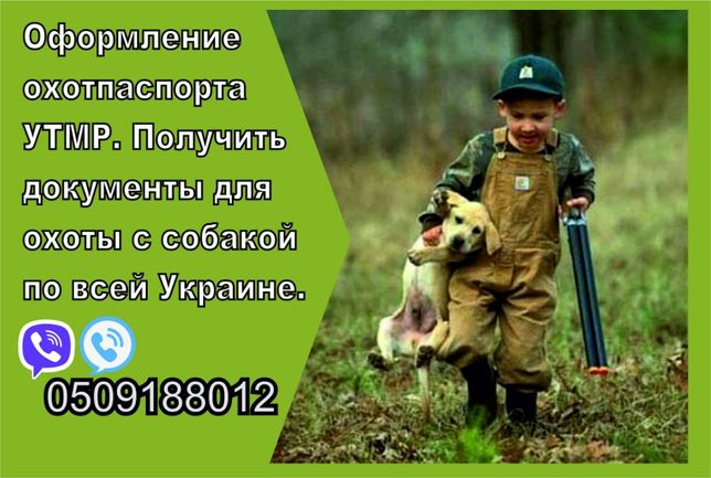 Допуск на охотничью собаку Луганск паспорт для охоты