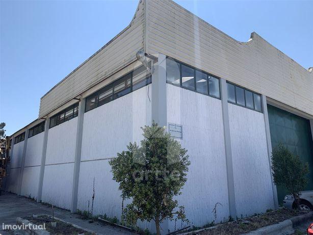 Armazem Industrial em Oliveirinha Retoma Banco