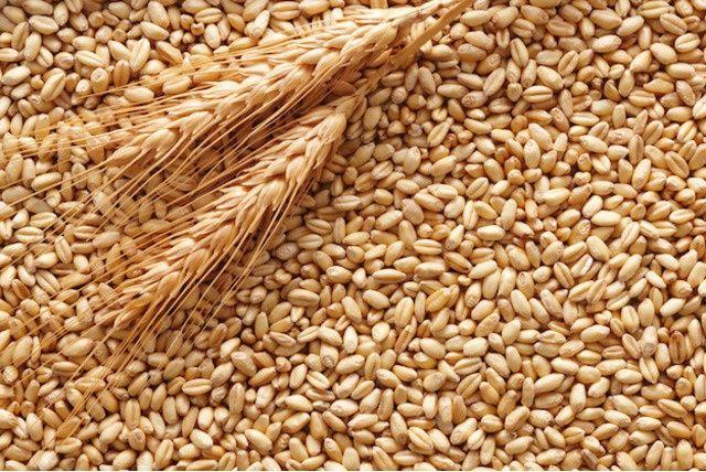 Зерно зерно зерно