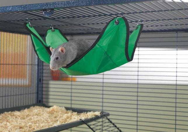 Hamak dla szczurka Savic