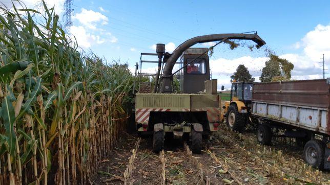 Sieczkarnia do kukurydzy Fortschritt e 281