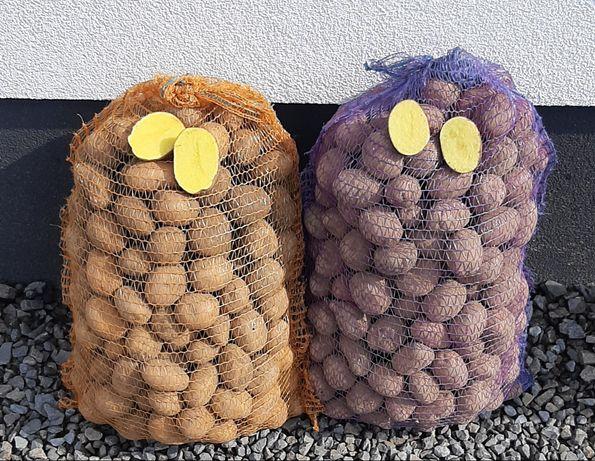 Ziemniaki jadalne wielkości sadzeniaka oraz paszowe