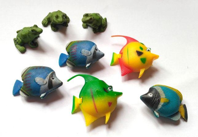 Рыбки, жабки для аквариума