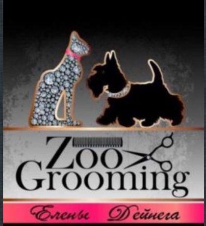 стрижка собак котов кроликов груминг зоосалон
