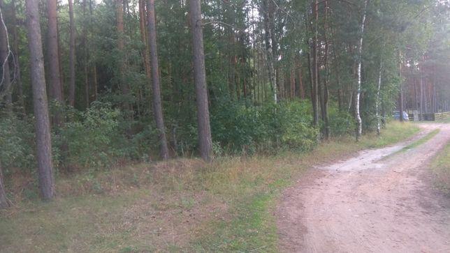 Działka rolno-leśna