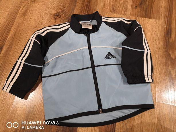 Kurteczka Adidas