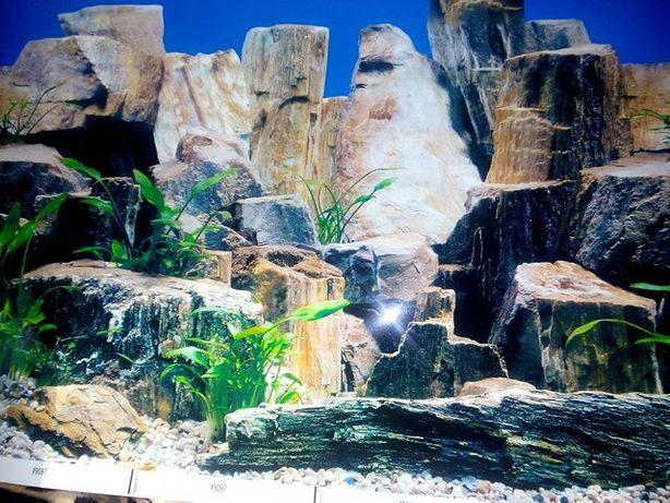 Фон на аквариум 2-х сторонний