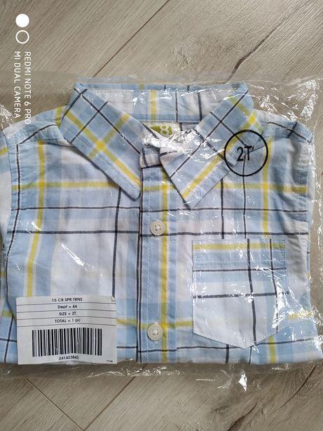 Рубашка 2т crazy8