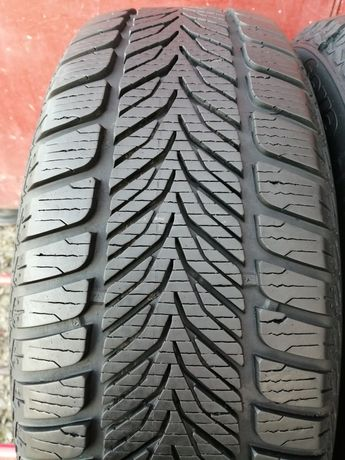 205/60/16 R16 92H SAVA ESKIMO HP 2шт ціна за 1шт зима шини