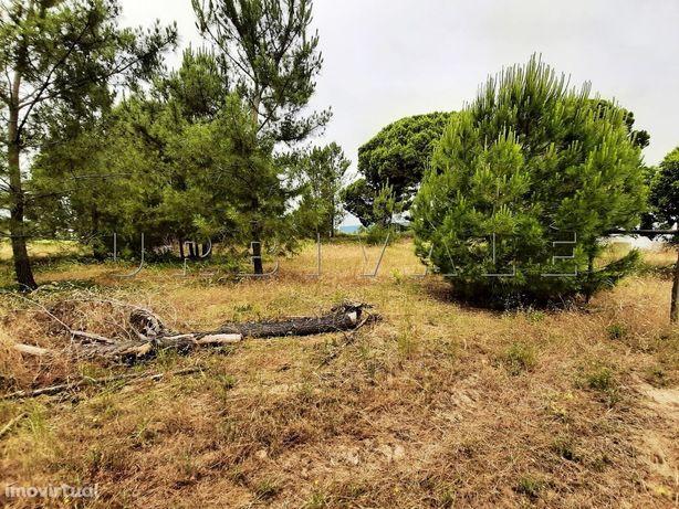 Terreno 2 170 m2, construção, Palmela, Setúbal