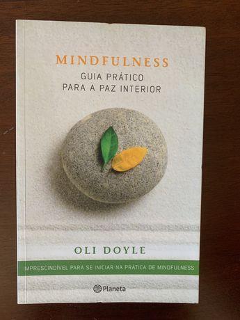 Mindfulness, guia prático para a paz interior