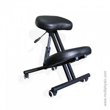 Cadeira Profissional Multiphysio Postur
