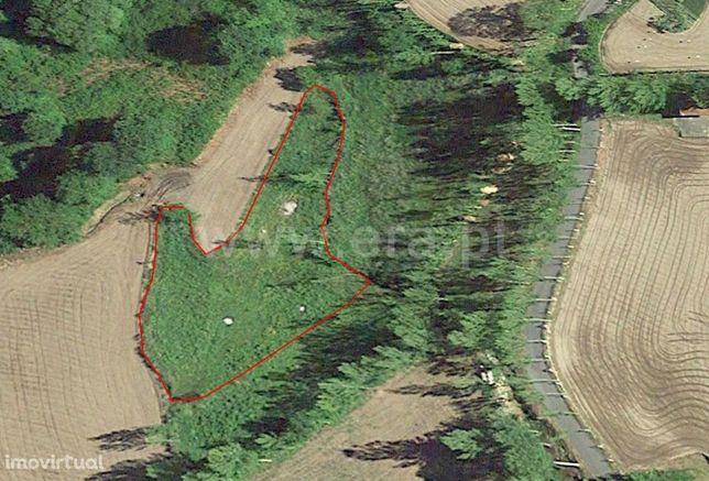 Terreno rústico com 4.601 m2 em Golães