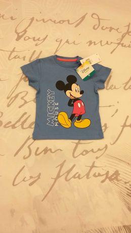 Roupa Mickey, Pluto, Silvestre Nova