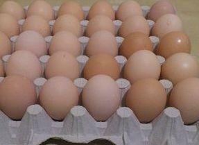 Wiejskie jajka 0,70 gr/szt