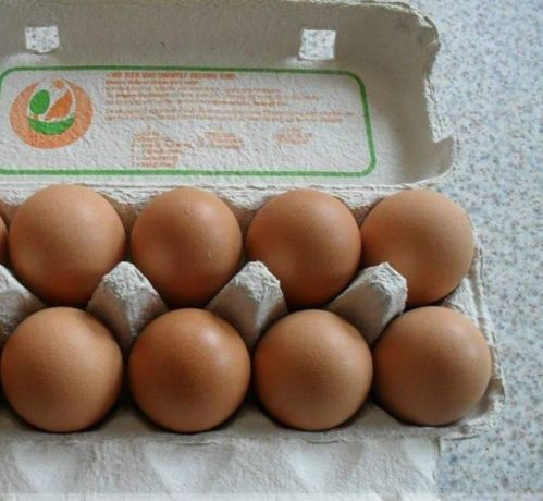 Jajka kurze ekologiczne