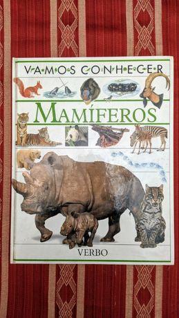 Livro Vamos Conhecer Mamíferos   Tamanho A4   Entrega gratuita*