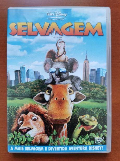 DVD Animação   Selvagem