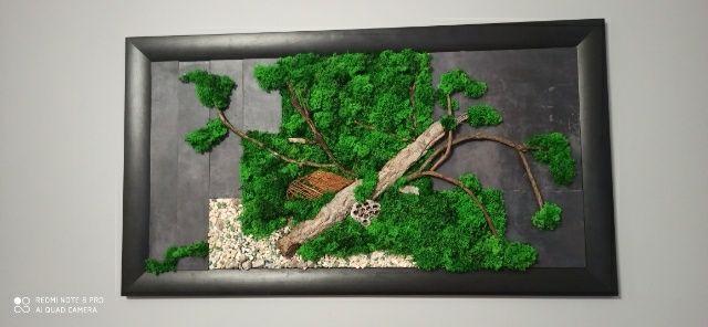 Obraz drewno, kamień, mech dekoracyjny