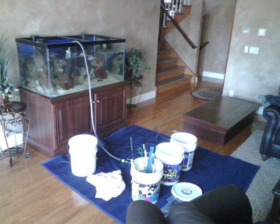 Установка, Запуск, Обслуживание аквариумов