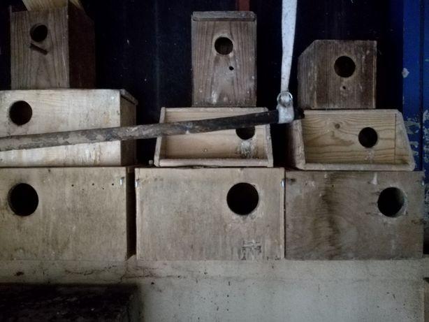 Vendo ou troco ninhos de Agapones e Periquitos