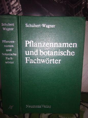 Botanisches Wörterbuch: Pflanzennamen und botanische