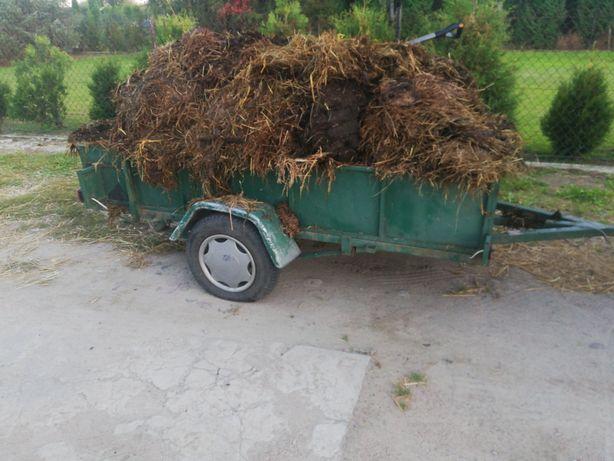 Ekologiczny nawóz , obornik bydlęcy