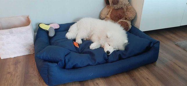 Duże legowisko kojec sofa dla psa 110/90 2XL XL L M