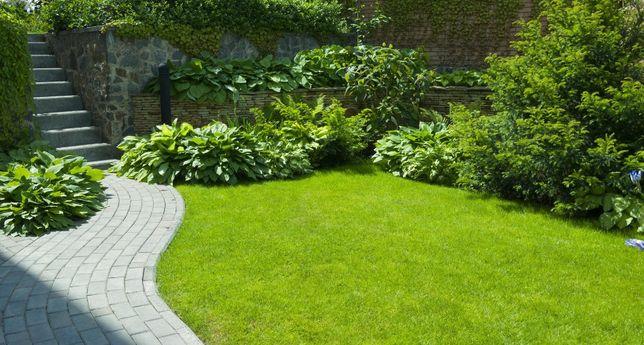 Pielęgnacja zieleni koszenie trawy przycinanie drzew zywopłotów
