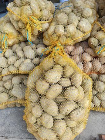 Ziemniaki Ignacy