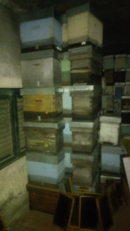 Vendo diversos lotes de material apícola em bom estado e desinfetado.
