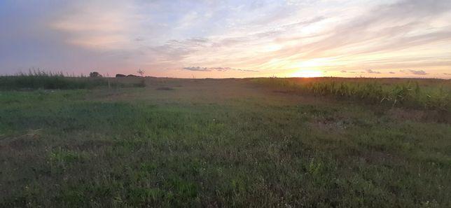 Продам участок землі