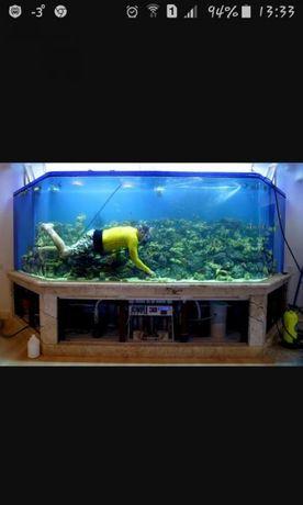 Избавление от аквариумных проблем!!!