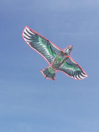 Орел воздушный змей гигантский